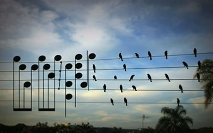Birds on Wire (original photo by Paulo Pinto with music notes added for effect)
